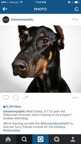 instagramtips2